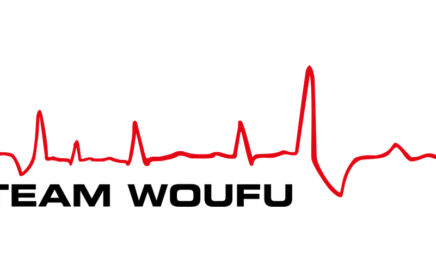 Logo Team Woufu